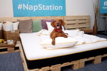 Palešu gultas izveide - vai tiešām tik vienkārši kā izskatās?